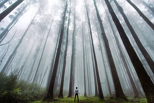 small-man-grand-nature-landscape-photography-2