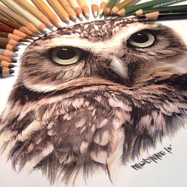 desenhos realistas (8)